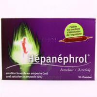 HEPANEPHROL, solution buvable en ampoule à ANNECY