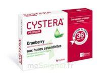 CYSTERA PREMIUM, bt 10 à ANNECY