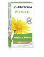 Arkogélules Piloselle Gélules Fl/45 à ANNECY