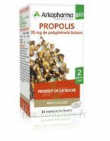 Arkogélules Propolis Bio Gélules Fl/45 à ANNECY