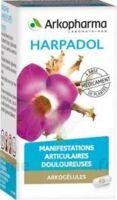ARKOGELULES HARPAGOPHYTON, 150 gélules à ANNECY