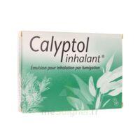 CALYPTOL INHALANT, émulsion pour inhalation par fumigation à ANNECY