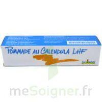 CALENDULA LHF POM T/20G à ANNECY