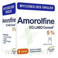 AMOROLFINE EG 5 % V ongles médicamenteux 1Fl/2,5ml+10 spat à ANNECY