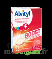 Alvityl Boost Comprimés B/20 à ANNECY